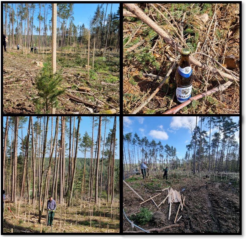 April 2021 – Klimaneutraler Zukunftswald